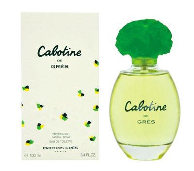 Picture of CABOTINE
